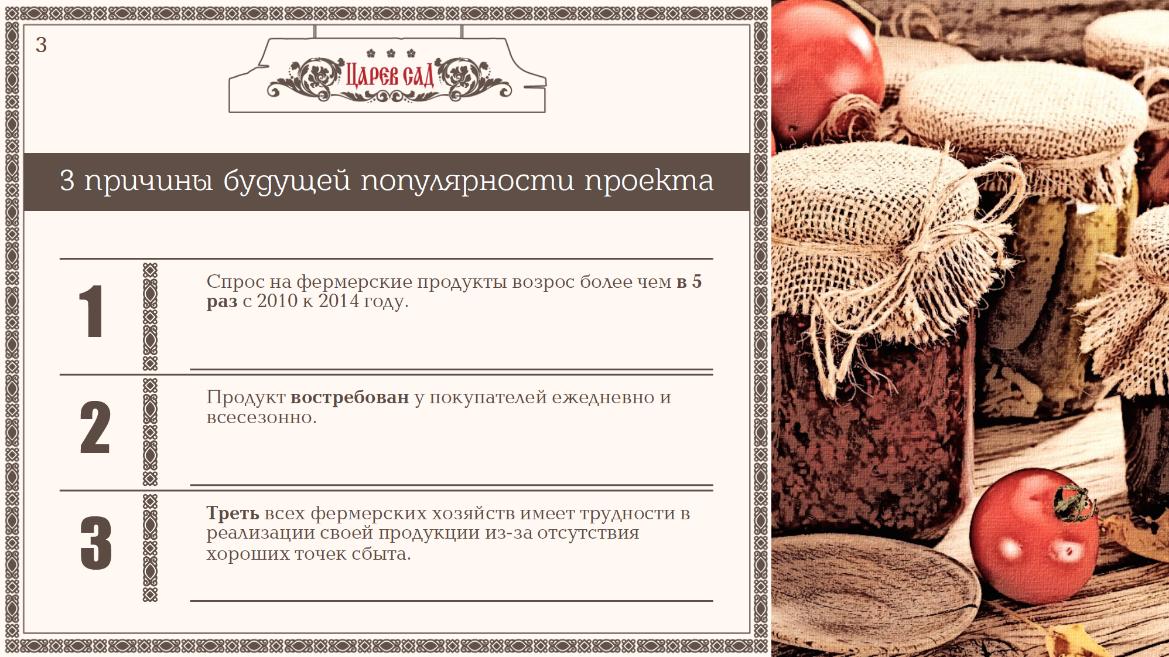 portfolio tsarevsad presentation 03