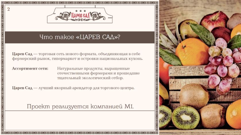 portfolio tsarevsad presentation 06