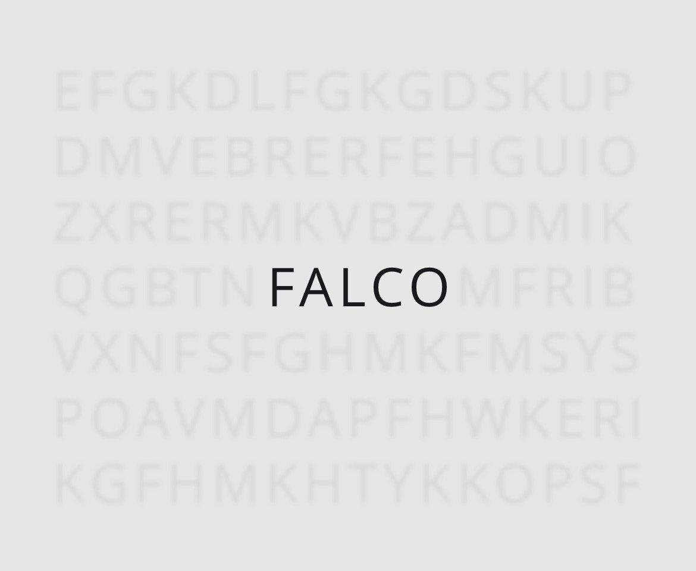 portfolio falco brand 02