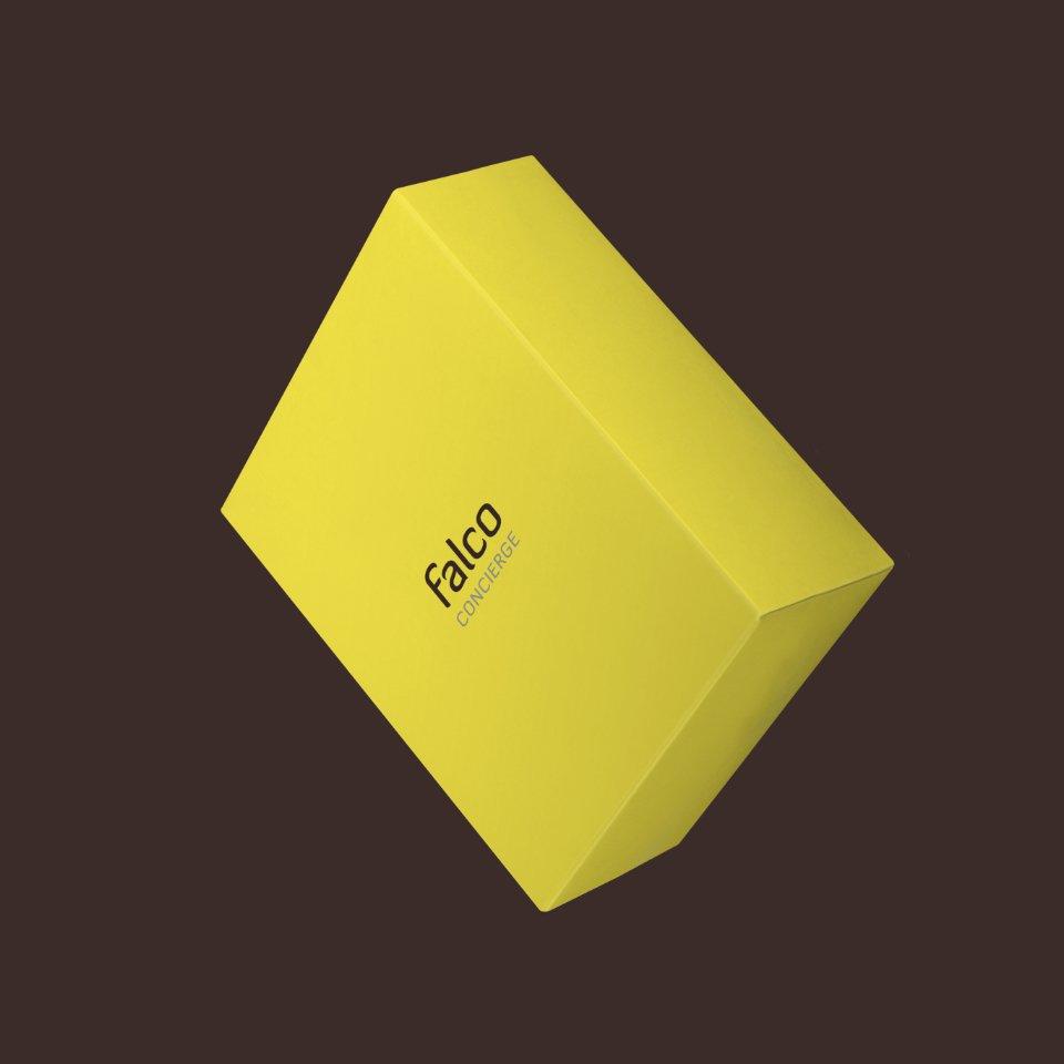 portfolio falco brand 13