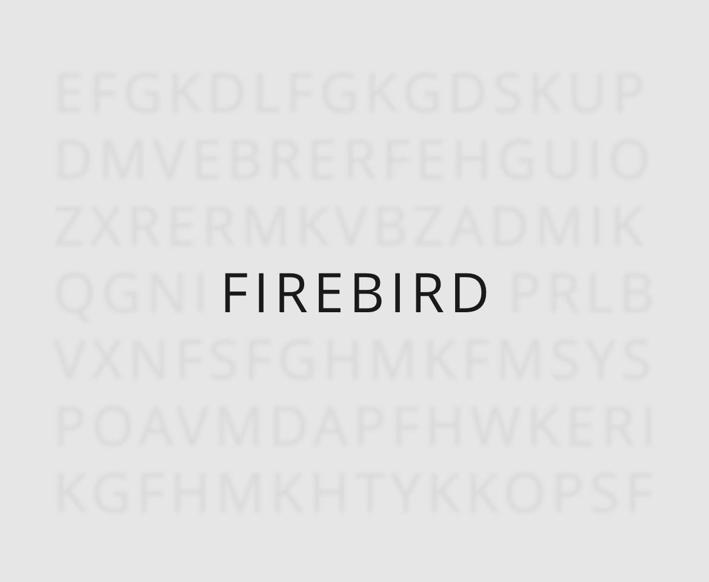portfolio firebird brand 02