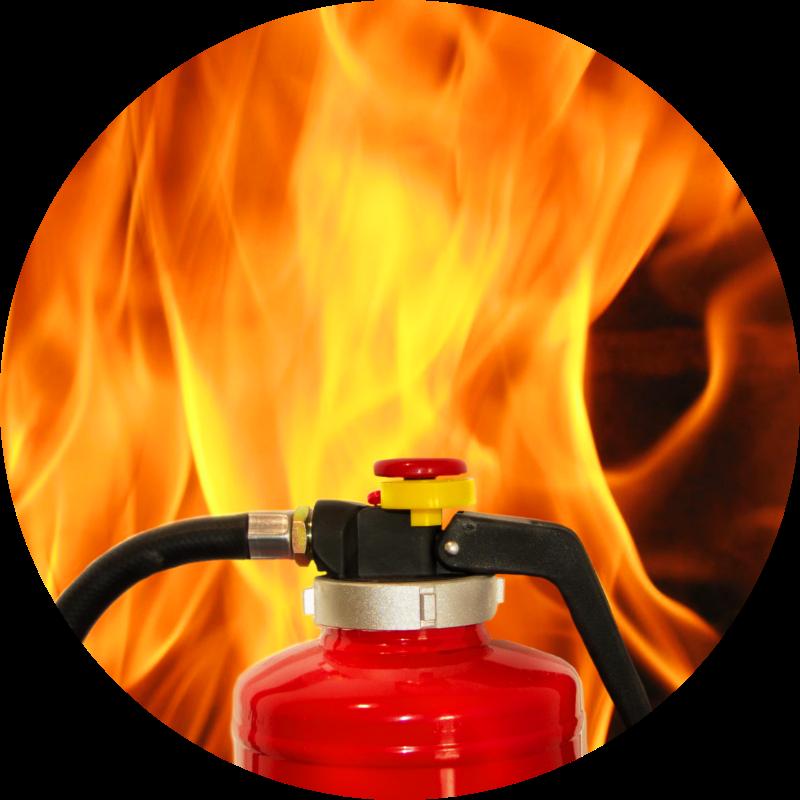 portfolio firebird brand 04
