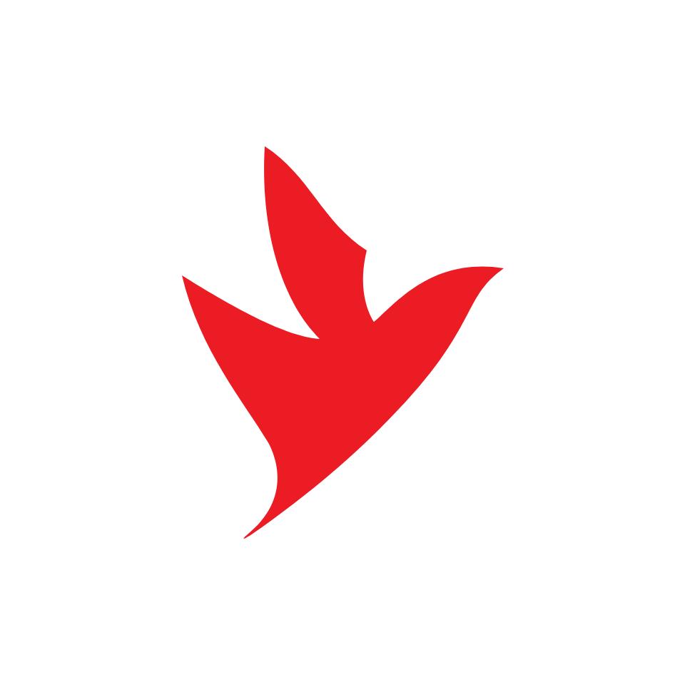 portfolio firebird brand 05