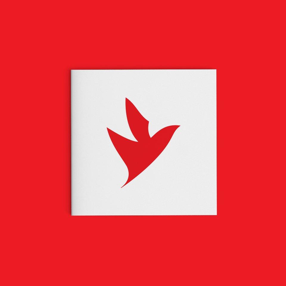portfolio firebird brand 10