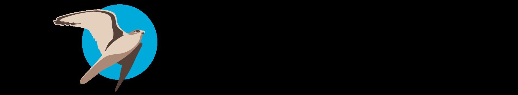 portfolio bilavia logo 04