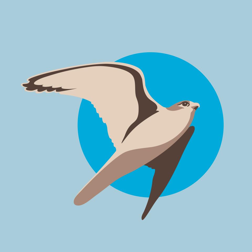 portfolio bilavia logo 05